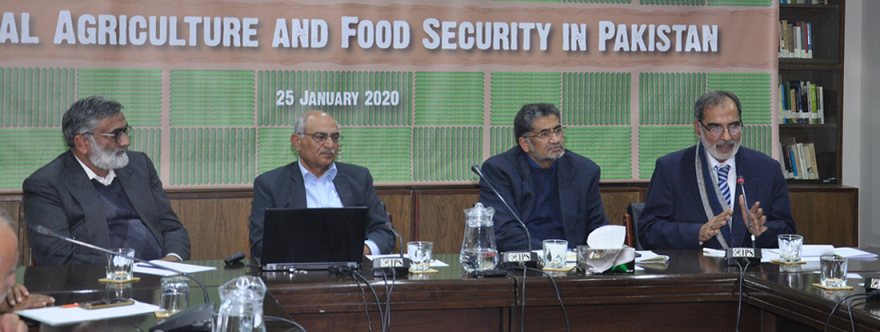 National-Agriculture-and-Food-Security-in-Pakistan